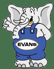 elefante-evans